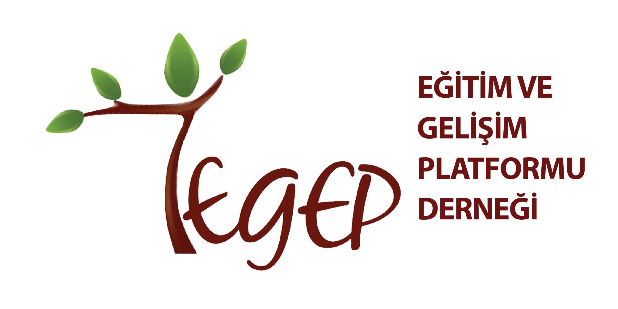 TEGEP Gündem Dergisindeki İlk Yazım